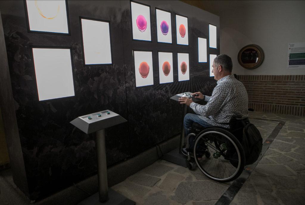 Museo Centro Temático del vino accesible para personas con discapacidad. Proyecto desarrollado por Equalitas Accesibilidad